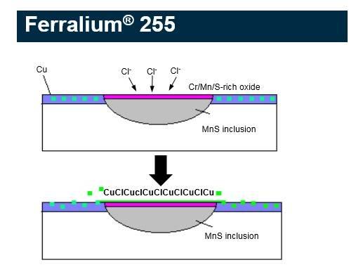 ferralium 255